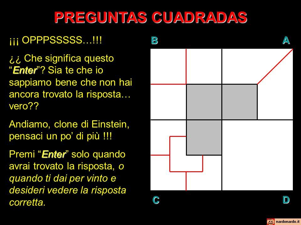 PREGUNTAS CUADRADAS BAD C ¡¡¡ OPPPSSSSS…!!. Enter ¿¿ Che significa questoEnter.