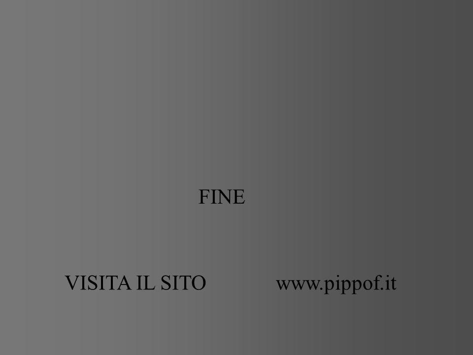 FINE VISITA IL SITOwww.pippof.it