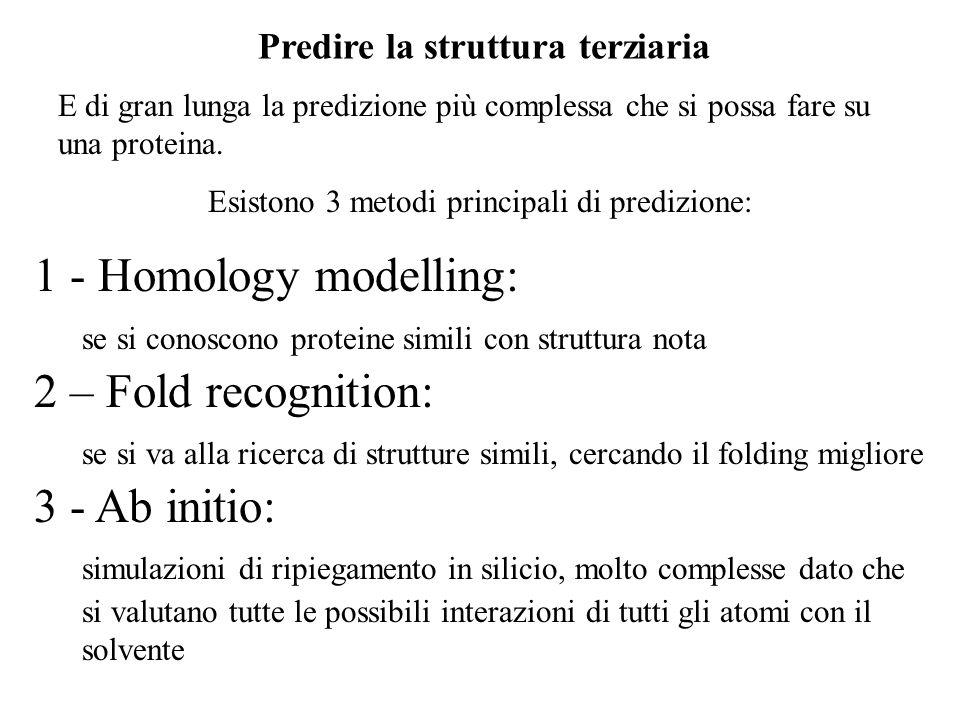 Predire la struttura terziaria E di gran lunga la predizione più complessa che si possa fare su una proteina. Esistono 3 metodi principali di predizio