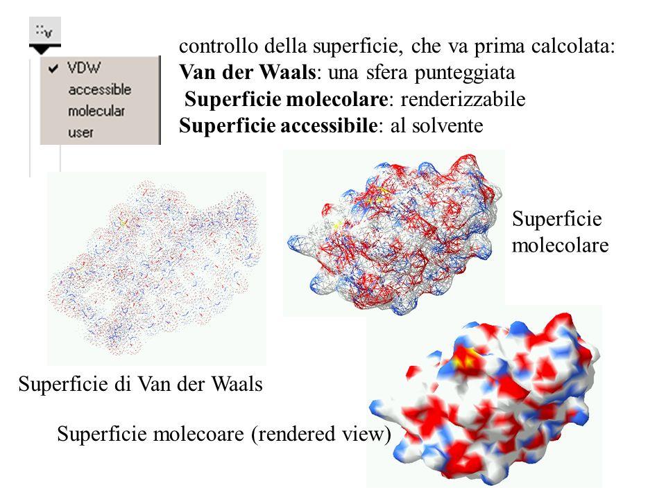 controllo della superficie, che va prima calcolata: Van der Waals: una sfera punteggiata Superficie molecolare: renderizzabile Superficie accessibile: