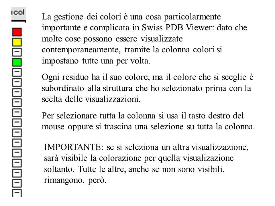 La gestione dei colori è una cosa particolarmente importante e complicata in Swiss PDB Viewer: dato che molte cose possono essere visualizzate contemp