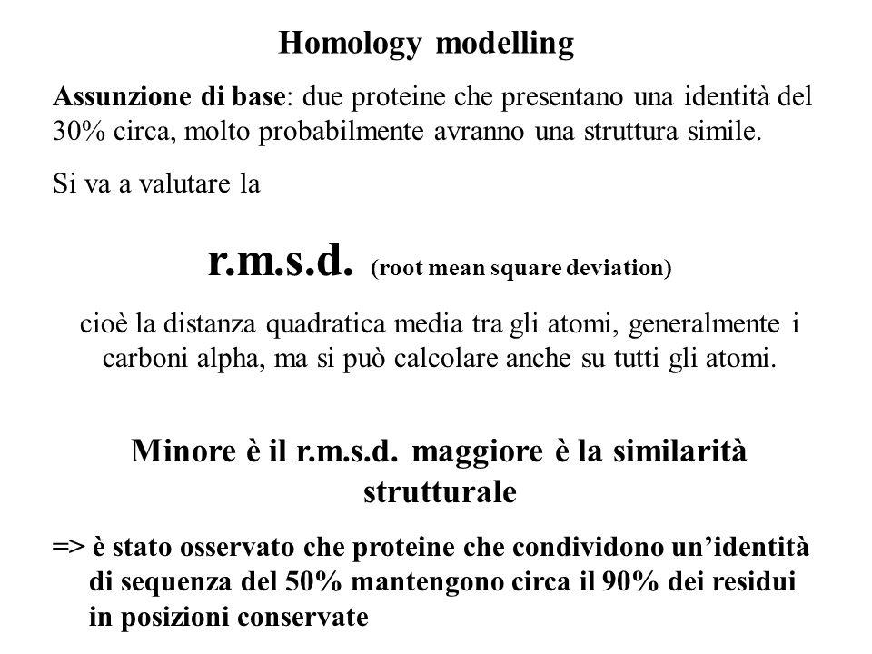 Homology modelling Assunzione di base: due proteine che presentano una identità del 30% circa, molto probabilmente avranno una struttura simile. Si va