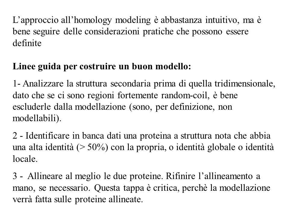 Lapproccio allhomology modeling è abbastanza intuitivo, ma è bene seguire delle considerazioni pratiche che possono essere definite Linee guida per co