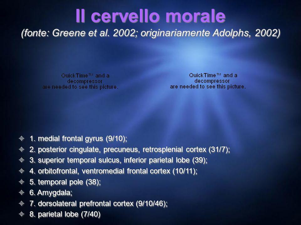 Il cervello morale (fonte: Greene et al. 2002; originariamente Adolphs, 2002) 1. medial frontal gyrus (9/10); 2. posterior cingulate, precuneus, retro