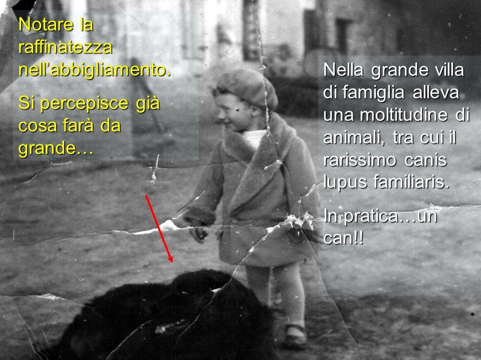 Nella grande villa di famiglia alleva una moltitudine di animali, tra cui il rarissimo canis lupus familiaris. In pratica…un can!! Notare la raffinate