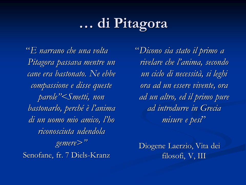 … di Pitagora E narrano che una volta Pitagora passava mentre un cane era bastonato.