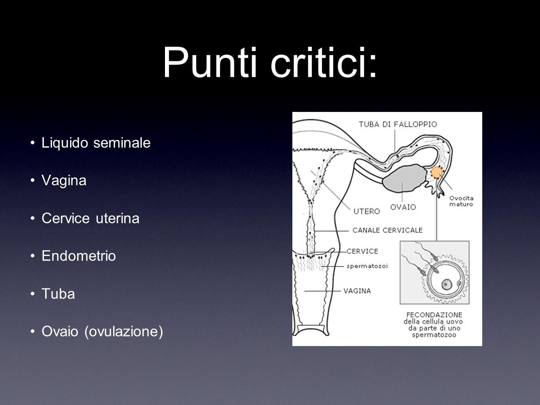 Punti critici: Liquido seminale Vagina Cervice uterina Endometrio Tuba Ovaio (ovulazione)