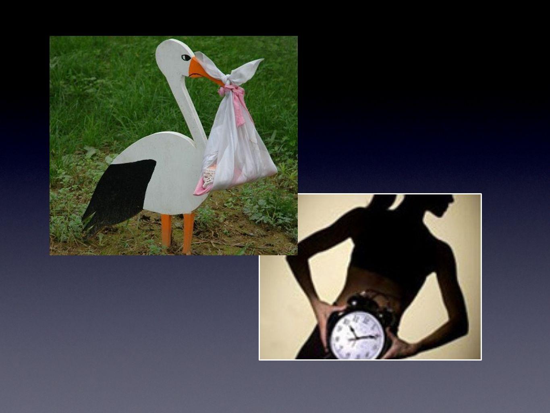 PERIODO RIPRODUTTIVO (menarca - menopausa) CICLO MESTRUALE (fase ovulatoria) La Riproduzione Femminile e le Windows Opportunity