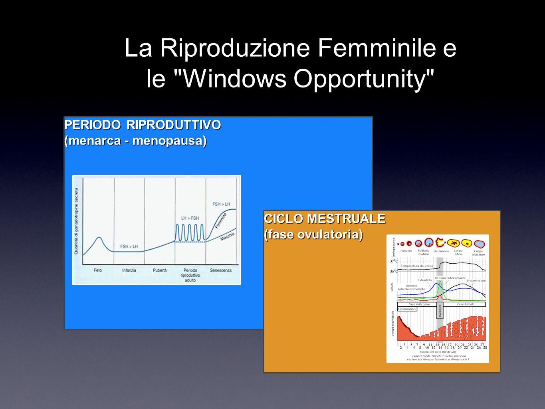 PERIODO RIPRODUTTIVO (menarca - menopausa) CICLO MESTRUALE (fase ovulatoria) La Riproduzione Femminile e le