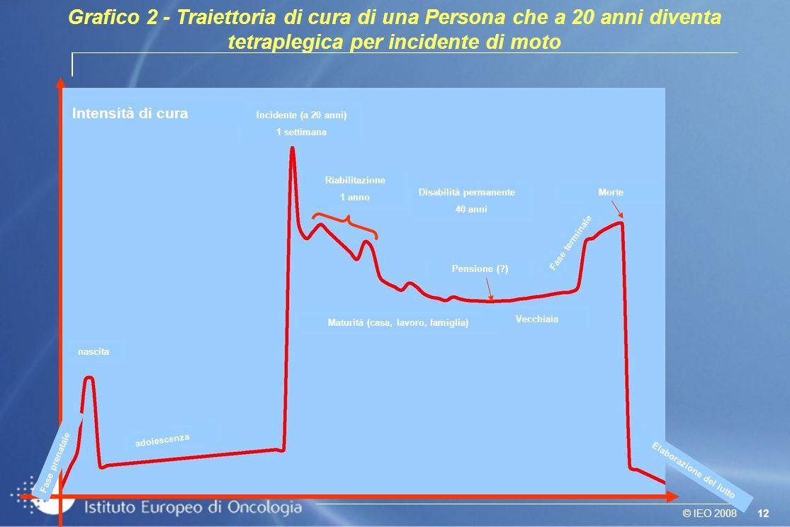12© IEO 2008 Grafico 2 - Traiettoria di cura di una Persona che a 20 anni diventa tetraplegica per incidente di moto Incidente (20 anni) Fase prenatal