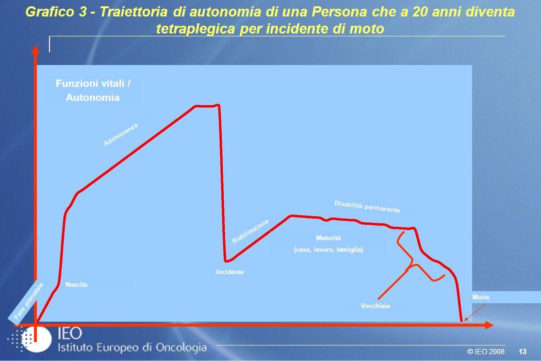13© IEO 2008 Grafico 3 - Traiettoria di autonomia di una Persona che a 20 anni diventa tetraplegica per incidente di moto Incidente (20 anni) Fase pre