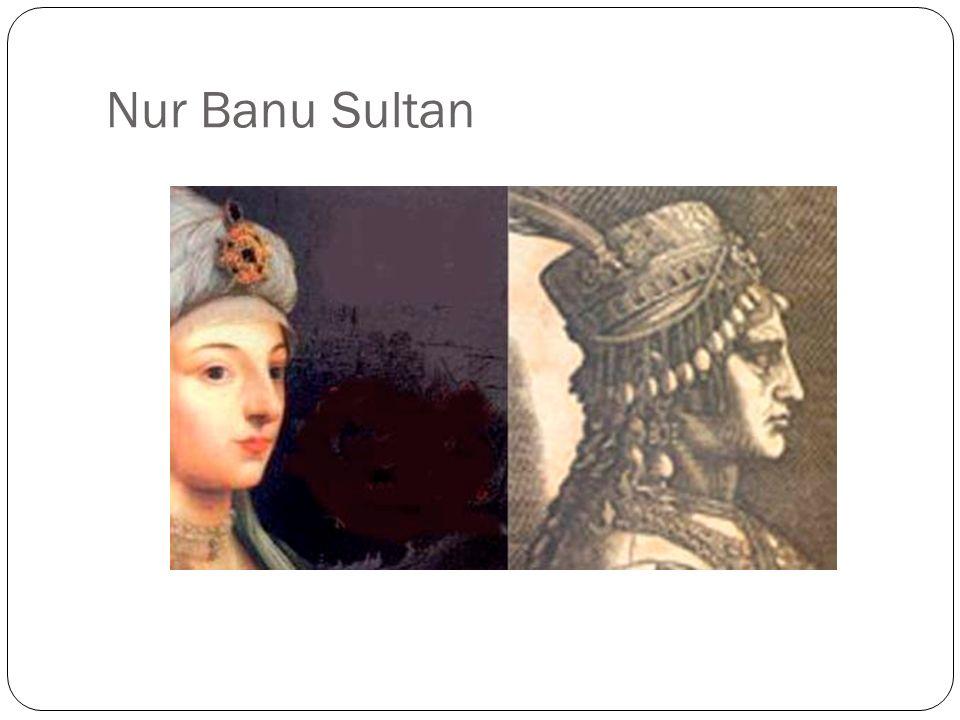 Il mito delle origini veneziane Tre ipotesi sulle origini di Nur Banu, ragazza nata nellisola di Paro e rapita nel 1537 a Corfù (colonia veneziana) da Kayreddin: 1.
