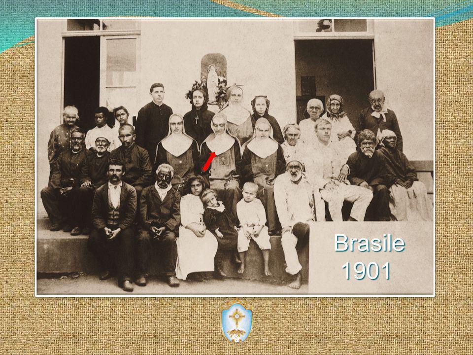Brasile Brasile1901