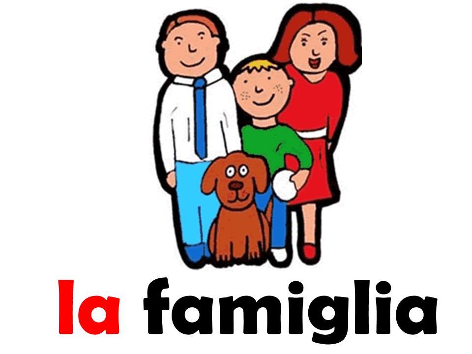 Il cognato La cognara Brother in law Sister in law Il genero Son in -law La nuora Daughter in law I parenti relatives