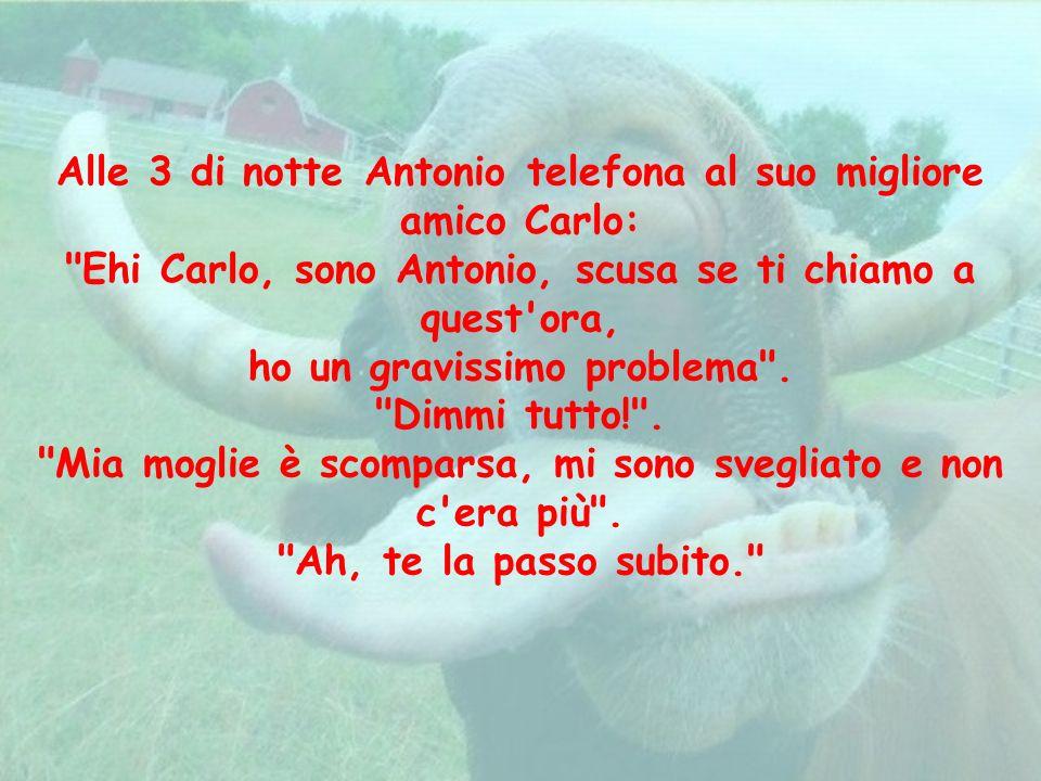 Alle 3 di notte Antonio telefona al suo migliore amico Carlo: Ehi Carlo, sono Antonio, scusa se ti chiamo a quest ora, ho un gravissimo problema .