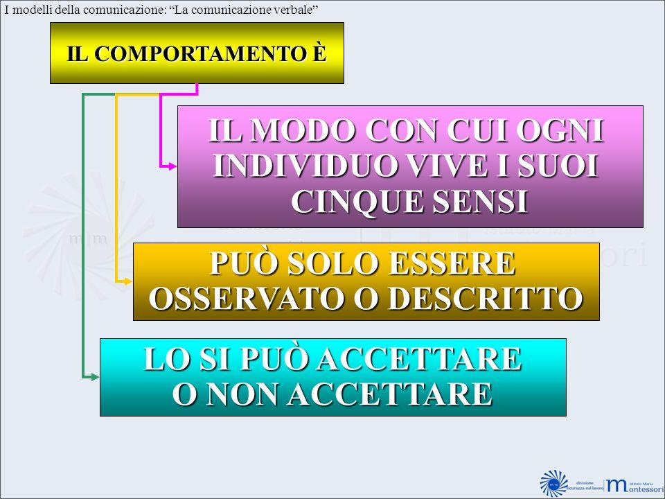 I modelli della comunicazione: La comunicazione verbale IL COMPORTAMENTO È IL MODO CON CUI OGNI INDIVIDUO VIVE I SUOI CINQUE SENSI PUÒ SOLO ESSERE OSS