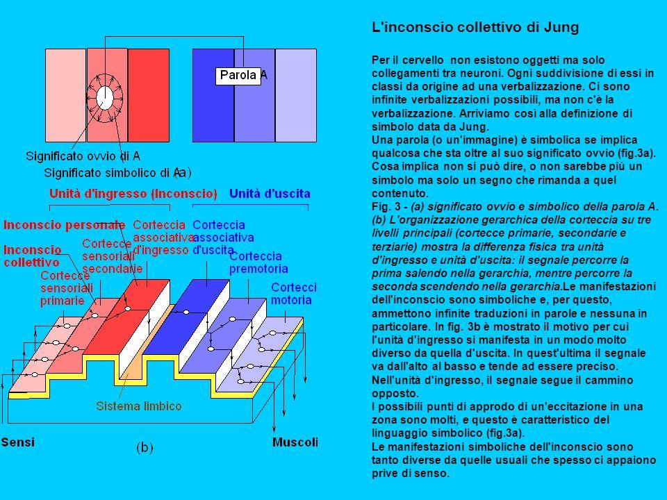 L inconscio collettivo di Jung Per il cervello non esistono oggetti ma solo collegamenti tra neuroni.