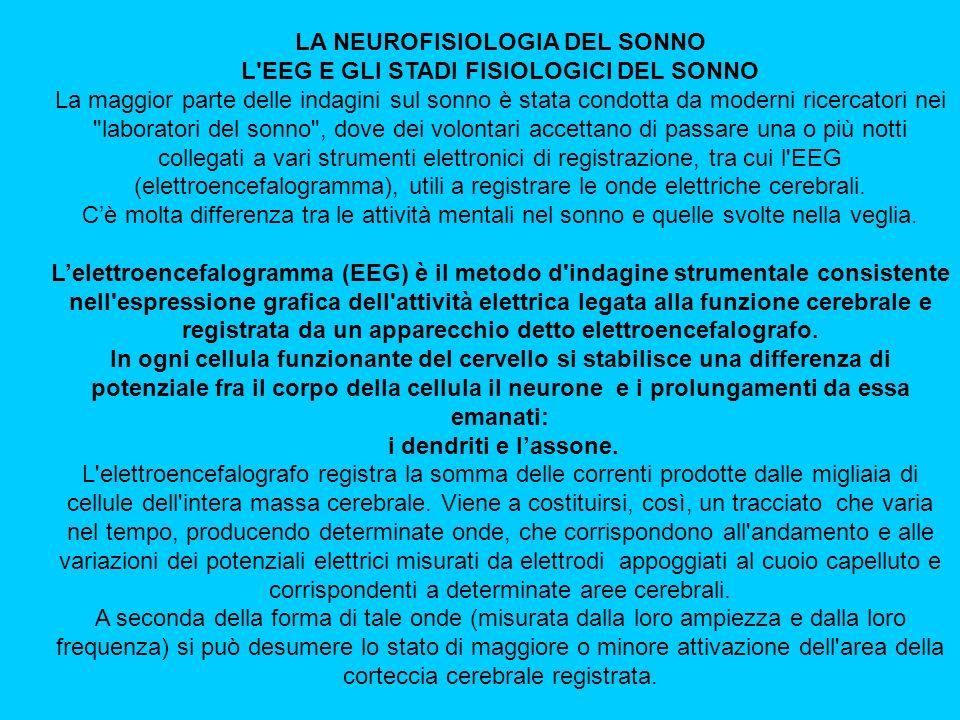 LA NEUROFISIOLOGIA DEL SONNO L EEG E GLI STADI FISIOLOGICI DEL SONNO La maggior parte delle indagini sul sonno è stata condotta da moderni ricercatori nei laboratori del sonno , dove dei volontari accettano di passare una o più notti collegati a vari strumenti elettronici di registrazione, tra cui l EEG (elettroencefalogramma), utili a registrare le onde elettriche cerebrali.