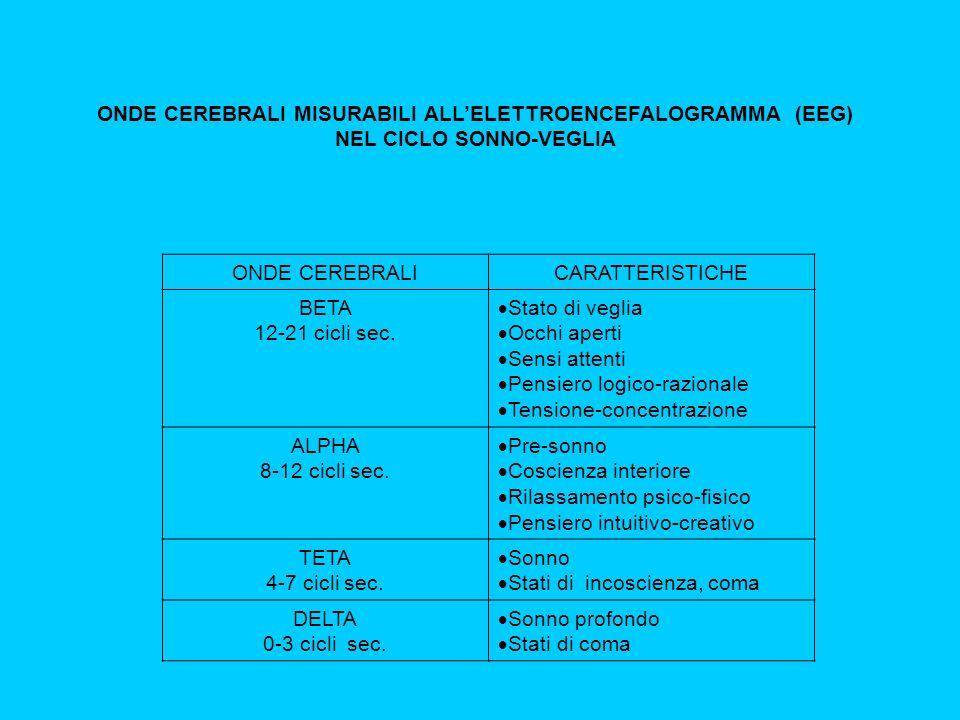 ONDE CEREBRALI MISURABILI ALLELETTROENCEFALOGRAMMA (EEG) NEL CICLO SONNO-VEGLIA ONDE CEREBRALICARATTERISTICHE BETA 12-21 cicli sec.