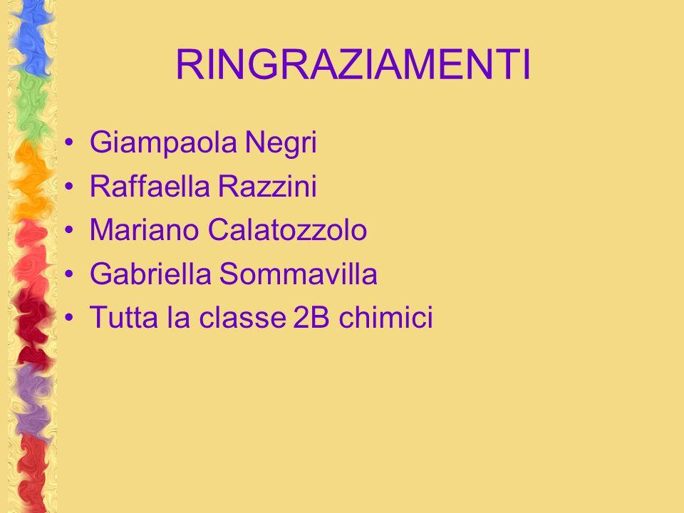 RINGRAZIAMENTI Giampaola Negri Raffaella Razzini Mariano Calatozzolo Gabriella Sommavilla Tutta la classe 2B chimici
