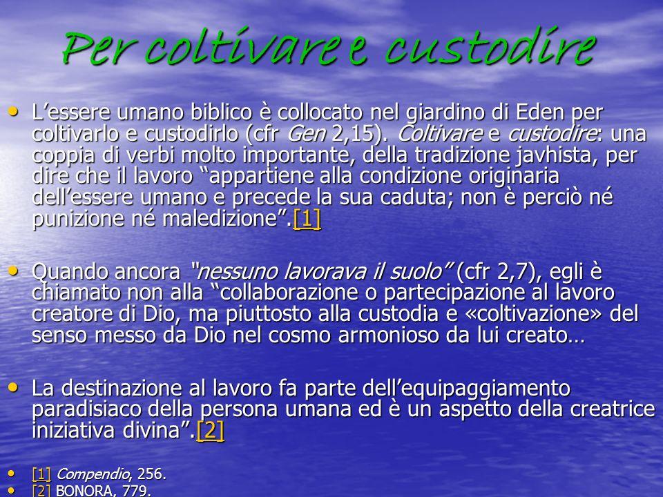 Per coltivare e custodire Lessere umano biblico è collocato nel giardino di Eden per coltivarlo e custodirlo (cfr Gen 2,15). Coltivare e custodire: un