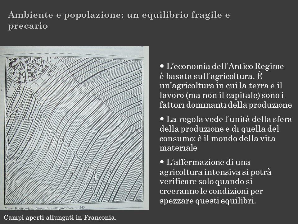 Leconomia dellAntico Regime è basata sullagricoltura. È unagricoltura in cui la terra e il lavoro (ma non il capitale) sono i fattori dominanti della
