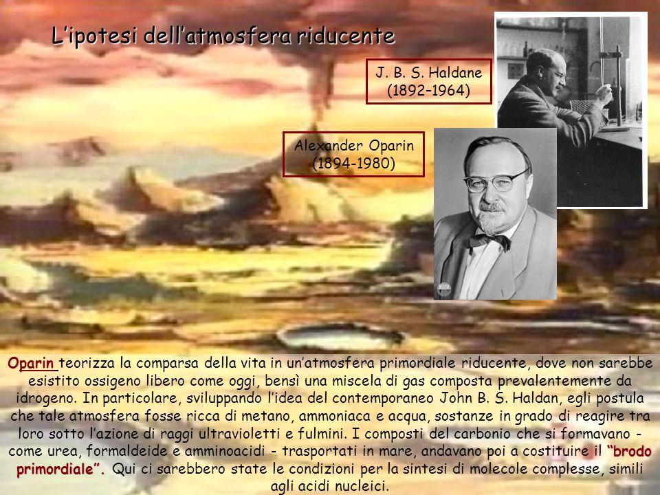 Lipotesi di Oparin, qualche decennio dopo, verrà in parte confermata sperimentalmente dal biochimico Stanley Miller Attraverso un esperimento che consisteva nel mettere in un pallone di vetro, dellacqua mantenuta in ebollizione, il vapore affluiva in un secondo pallone dove, con lammoniaca, il metano e lidrogeno, formava una miscela simile allipotetica atmosfera primordiale sottoposta a continue scariche a simulare i fulmini frequenti nellatmosfera primitiva.