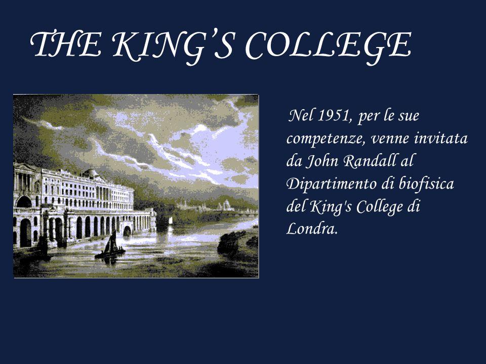 THE KINGS COLLEGE Nel 1951, per le sue competenze, venne invitata da John Randall al Dipartimento di biofisica del King s College di Londra.