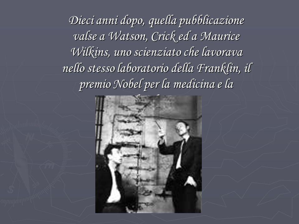 Dieci anni dopo, quella pubblicazione valse a Watson, Crick ed a Maurice Wilkins, uno scienziato che lavorava nello stesso laboratorio della Franklin, il premio Nobel per la medicina e la fisiologia.