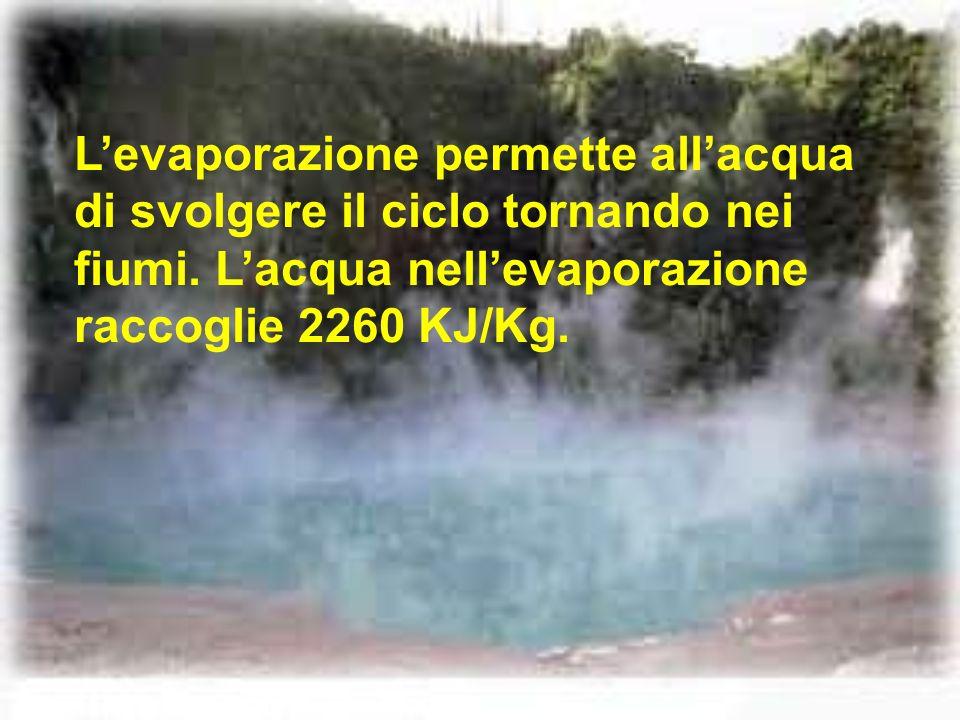 Levaporazione permette allacqua di svolgere il ciclo tornando nei fiumi. Lacqua nellevaporazione raccoglie 2260 KJ/Kg.