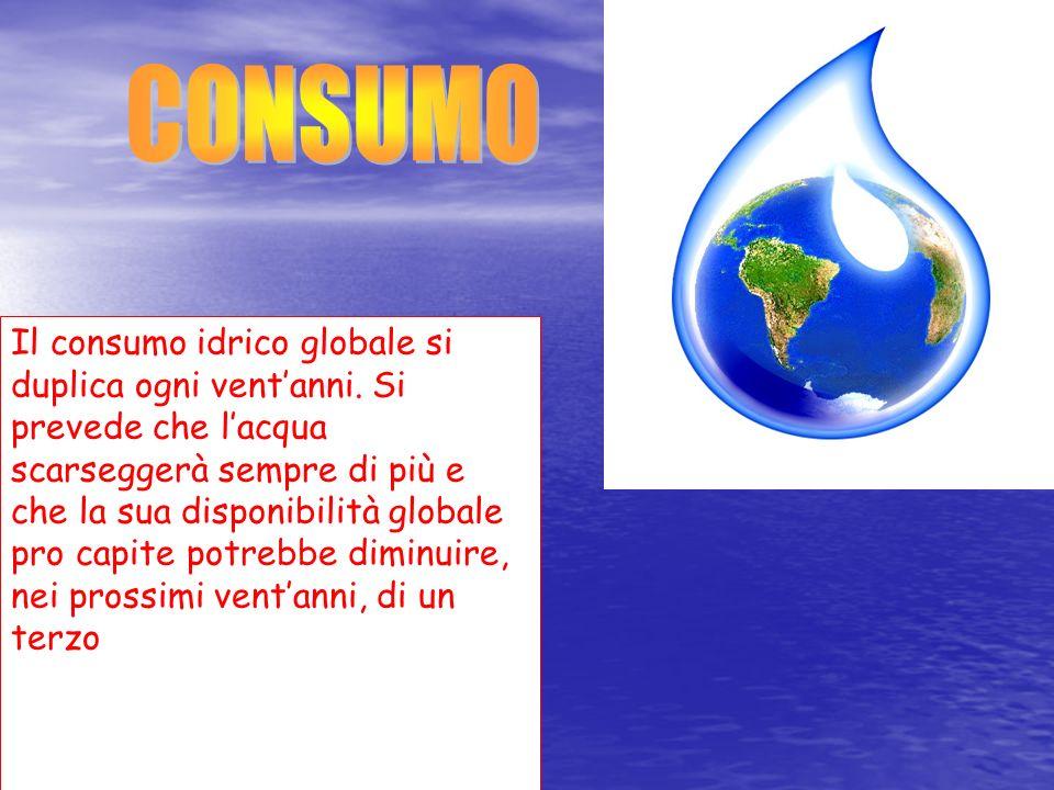 Il consumo idrico globale si duplica ogni ventanni. Si prevede che lacqua scarseggerà sempre di più e che la sua disponibilità globale pro capite potr