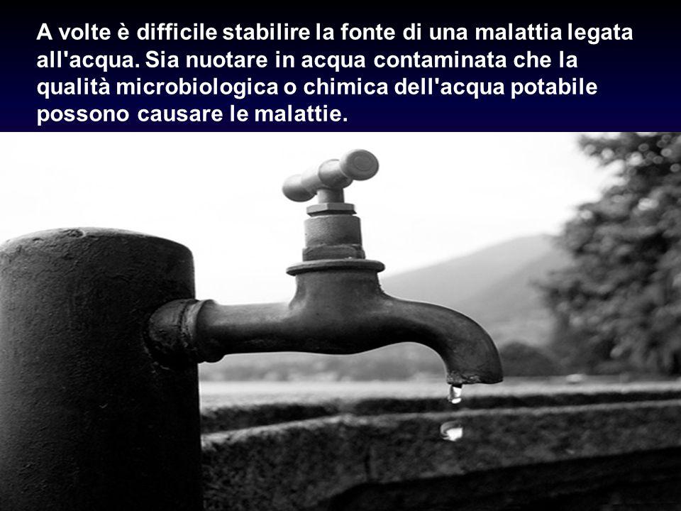 A volte è difficile stabilire la fonte di una malattia legata all'acqua. Sia nuotare in acqua contaminata che la qualità microbiologica o chimica dell