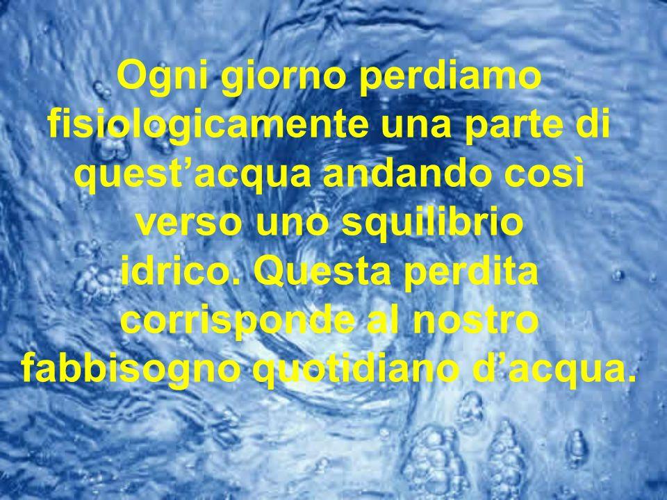 Ogni giorno perdiamo fisiologicamente una parte di questacqua andando così verso uno squilibrio idrico. Questa perdita corrisponde al nostro fabbisogn