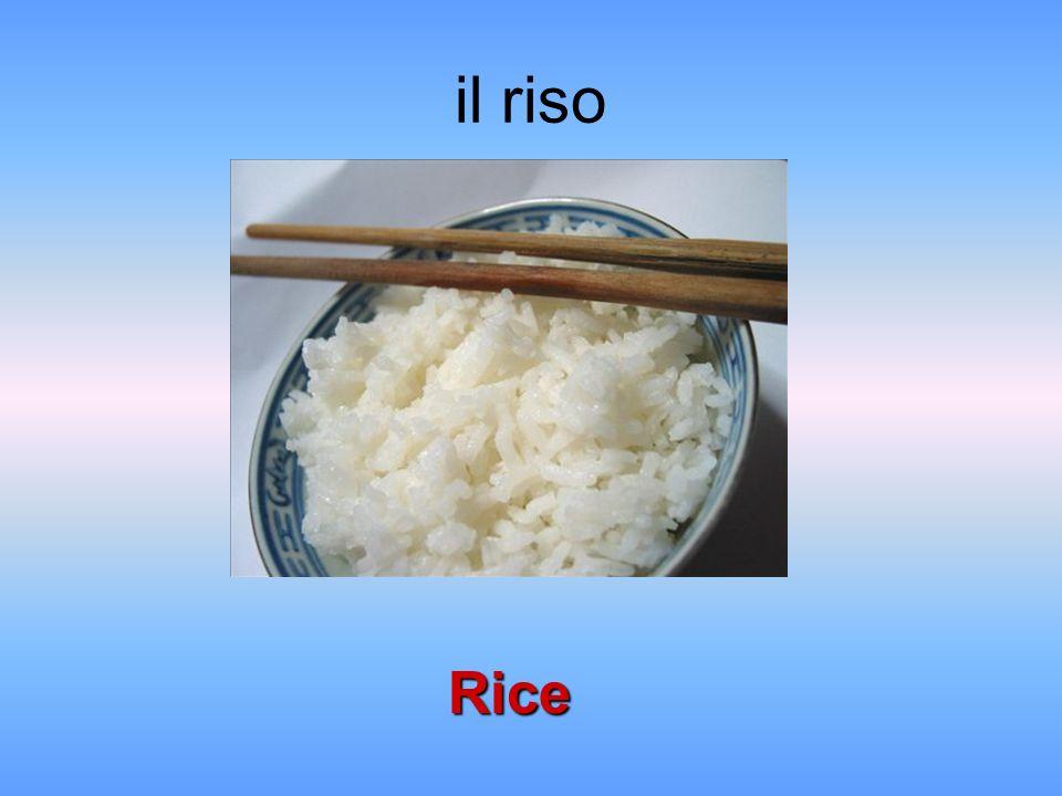il riso Rice