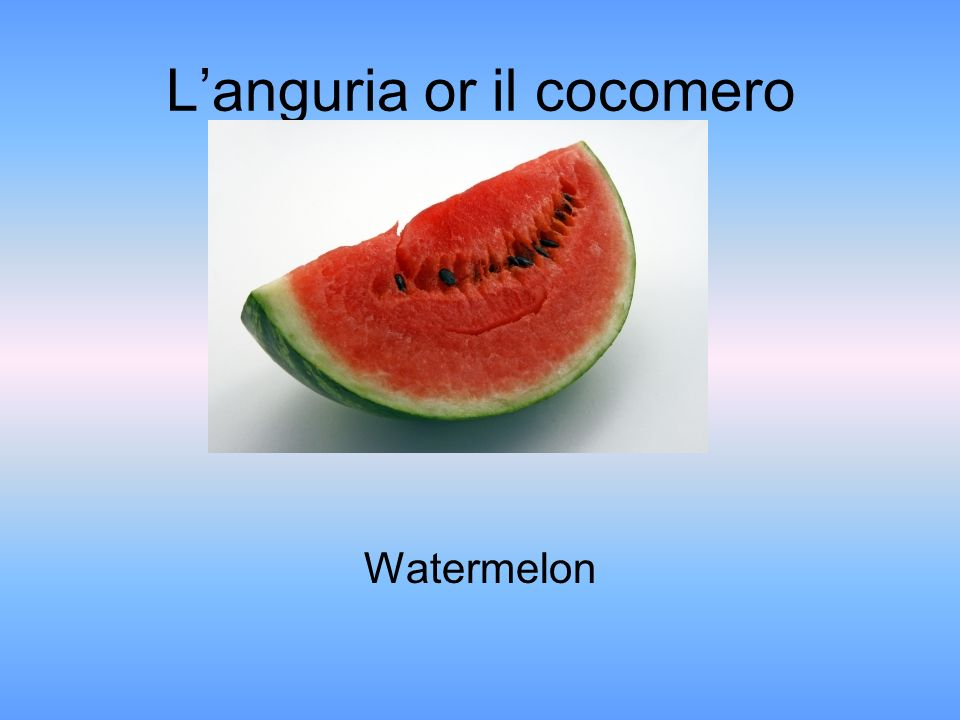 Languria or il cocomero Watermelon