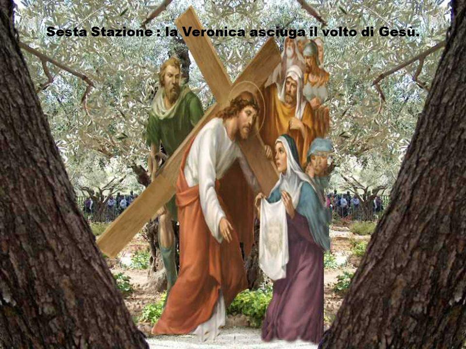 Signore, facci scoprire come noi possiamo, ognuno al nostro posto, portare con te la croce dellumanità e che possiamo, alla tua sequela, essere segno