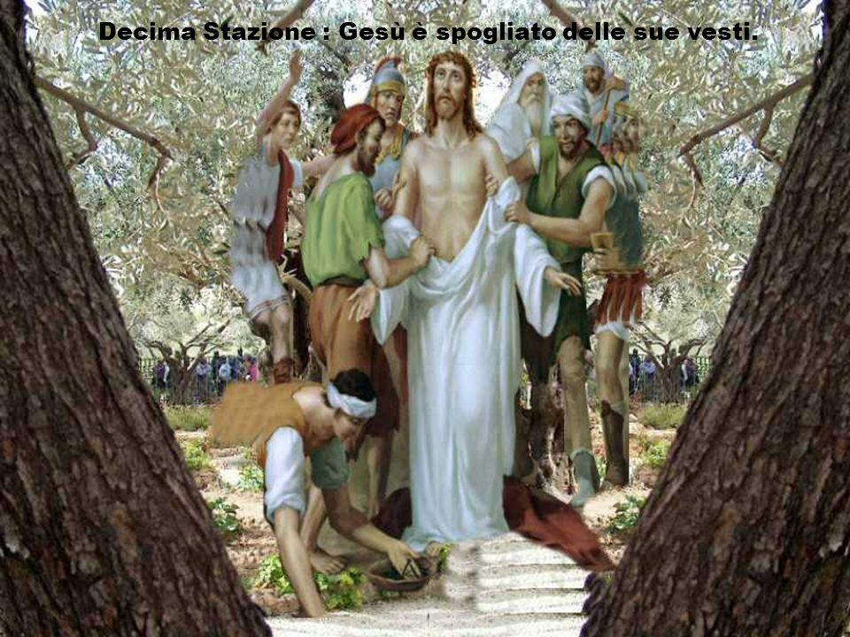 Signore, per noi, per i nostri fratelli e sorelle nel mondo intero, per tutti i vinti di ieri e di oggi, Gesù sei la selvezza del mondo. Questo è il g