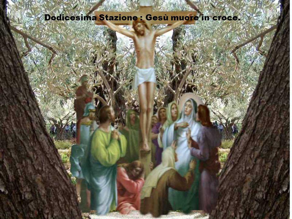 Signore, inchiodato sulla croce, ti preghiamo, sii tu la luce che trasforma le nostre croci. Aprici, come al buon ladrone, la speranza del paradiso. A