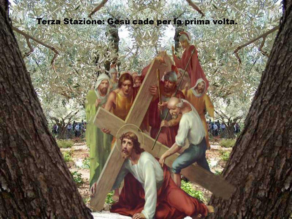 Signore, il tuo amore ci aiuta a portare una croce che ci schiaccia. Seguendo il tuo cammino di croce e di speranza, aiutaci a trovare la fiducia e la