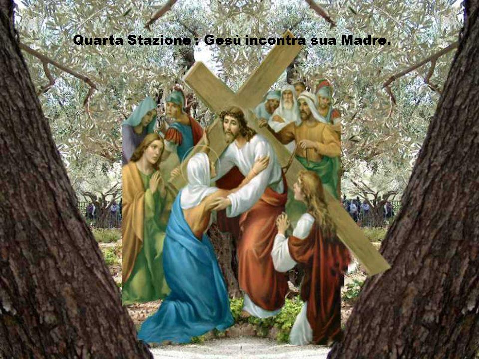 Signore, tu sei con gli uomini, le donne e i giovani feriti nel corpo e nello spirito dai segni del disprezzo, della violenza, dellodio e dellingiusti