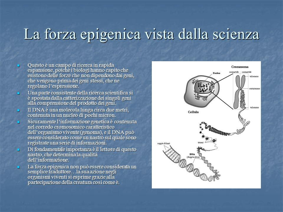 La forza epigenica vista dalla scienza Questo è un campo di ricerca in rapida espansione, poiché i biologi hanno capito che esistono delle forze che n