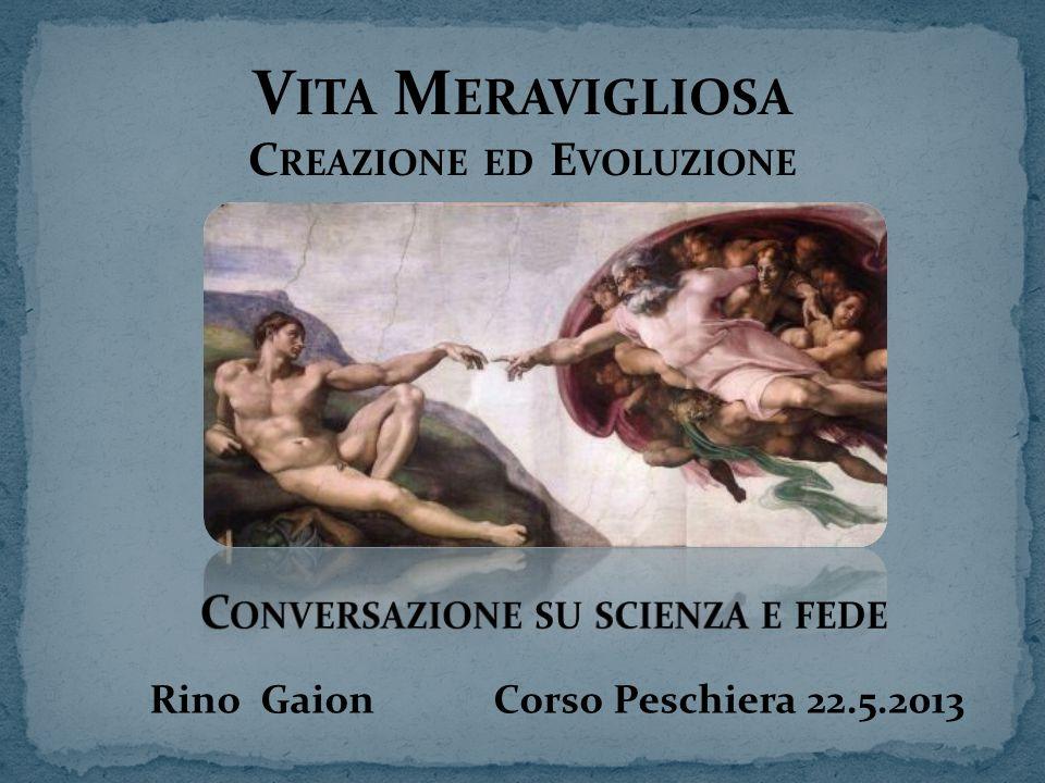 V ITA M ERAVIGLIOSA C REAZIONE ED E VOLUZIONE Rino Gaion Corso Peschiera 22.5.2013