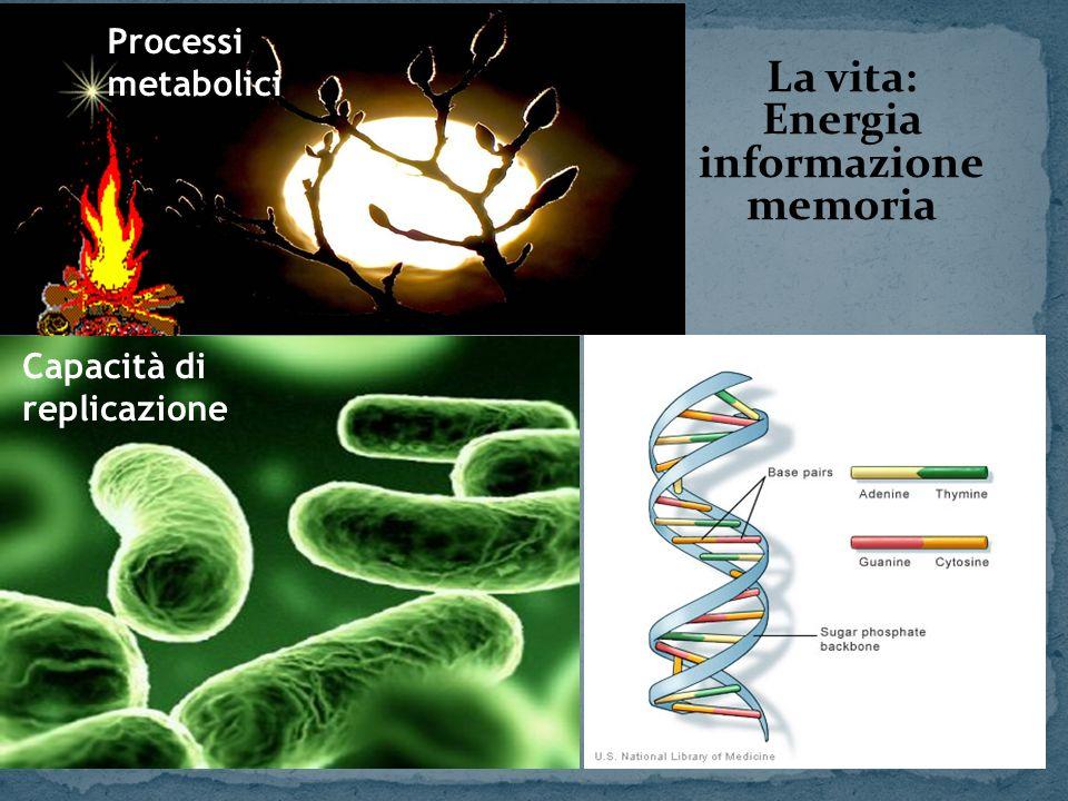 La vita: Energia informazione memoria Processi metabolici Capacità di replicazione