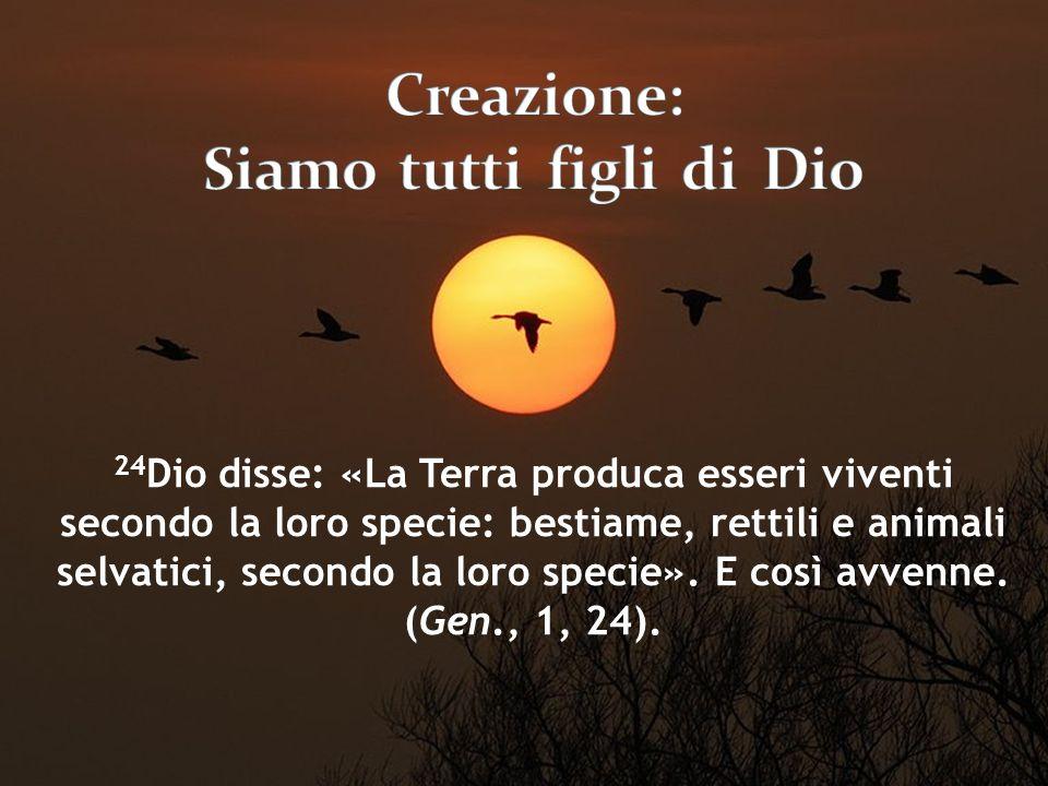 24 Dio disse: «La Terra produca esseri viventi secondo la loro specie: bestiame, rettili e animali selvatici, secondo la loro specie». E così avvenne.