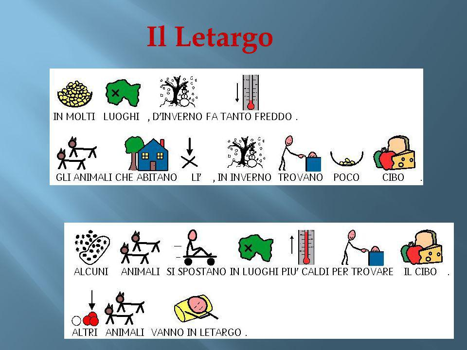 Il Letargo