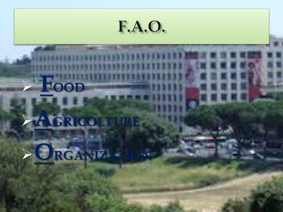 FOOD AGRICOLTURE ORGANIZATION