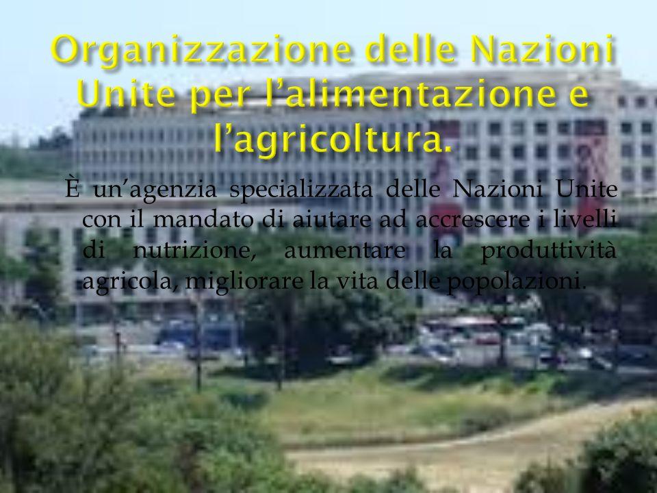 È unagenzia specializzata delle Nazioni Unite con il mandato di aiutare ad accrescere i livelli di nutrizione, aumentare la produttività agricola, migliorare la vita delle popolazioni.