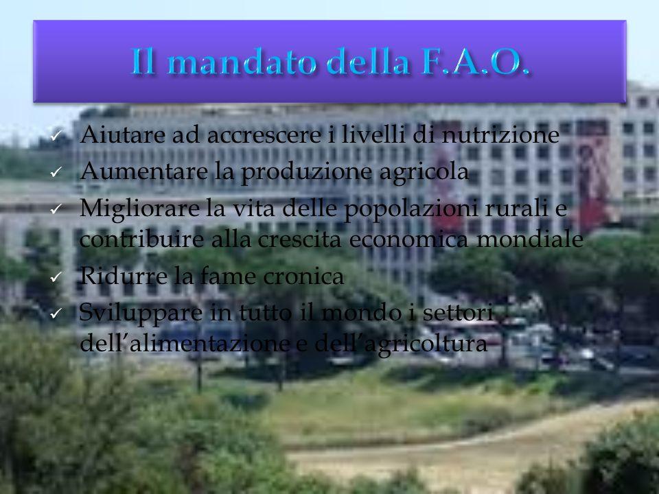 A Quebec City il 16 ottobre viene fondata la F.A.O. Inizialmente la sua sede era a Washington, attualmente si trova a Roma. I paesi membri sono 192.