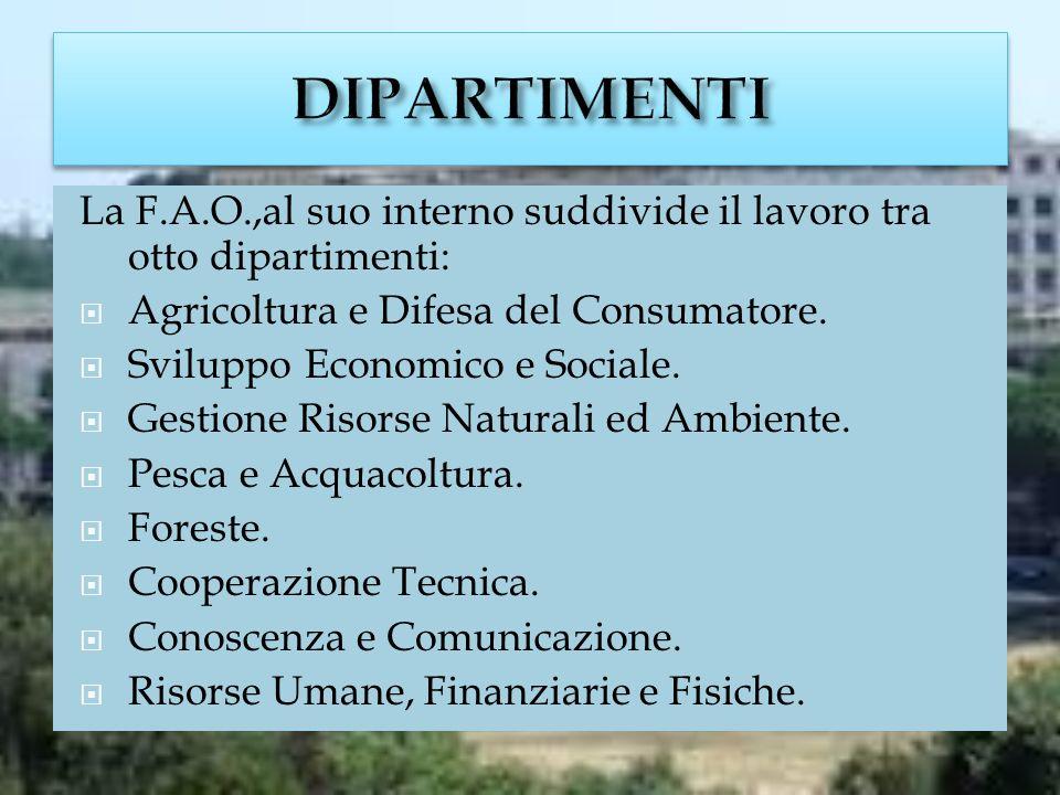 La F.A.O.,al suo interno suddivide il lavoro tra otto dipartimenti: Agricoltura e Difesa del Consumatore.