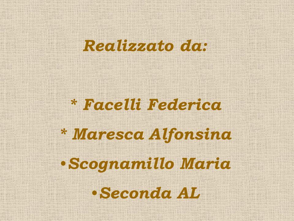 Realizzato da: * Facelli Federica * Maresca Alfonsina Scognamillo Maria Seconda AL